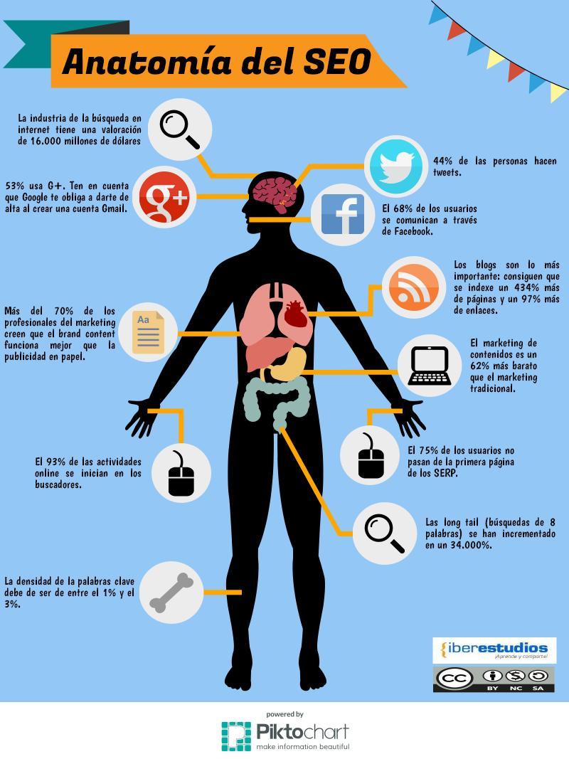 anatomia-seo-infografia